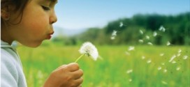 astim-alerjikrinit-sinüzit